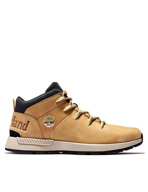 SNEAKERS HOMBRE TIMBERLAND...
